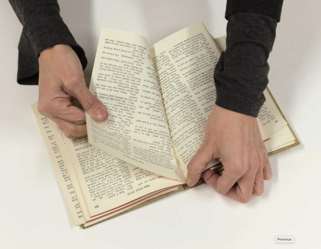 Выдирает страницу из словаря